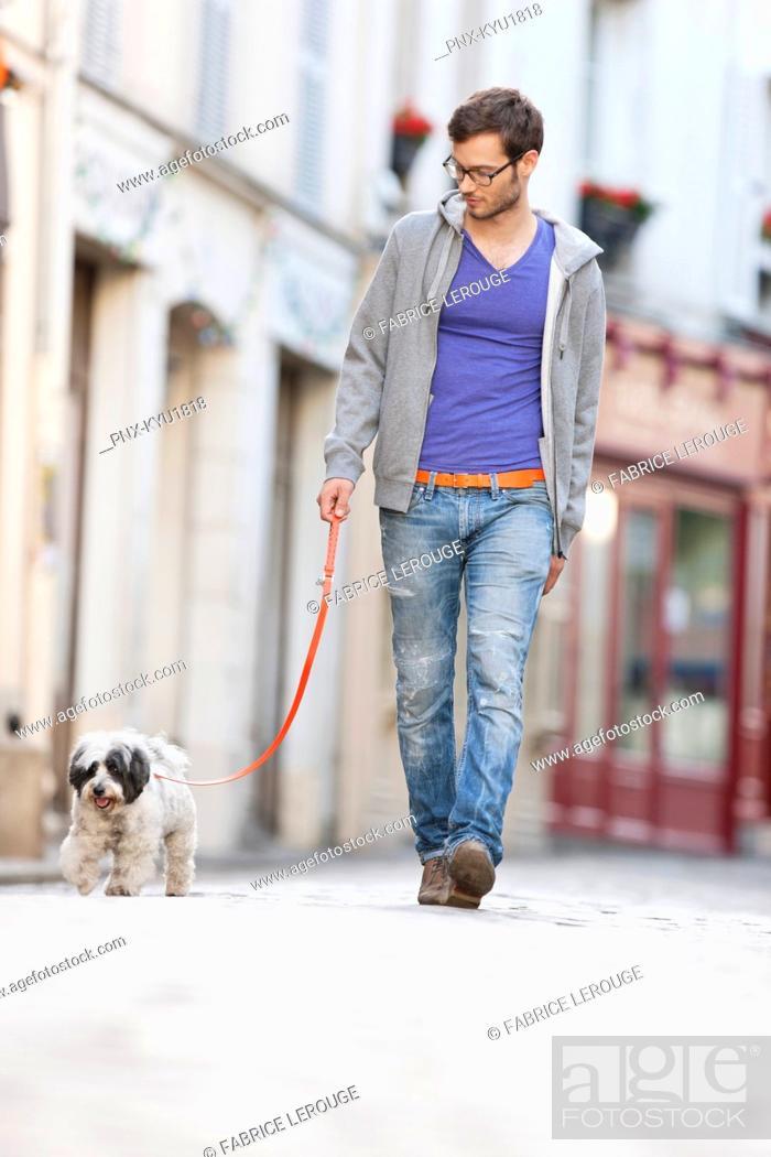 Stock Photo: Man holding a dog on leash walking on the street, Paris, Ile-de-France, France.