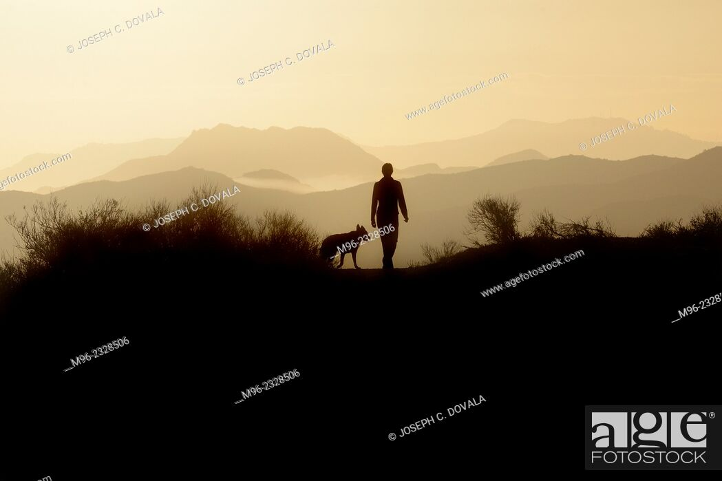 Stock Photo: Woman and dog early morning in field, Thousand Oaks, California, USA.