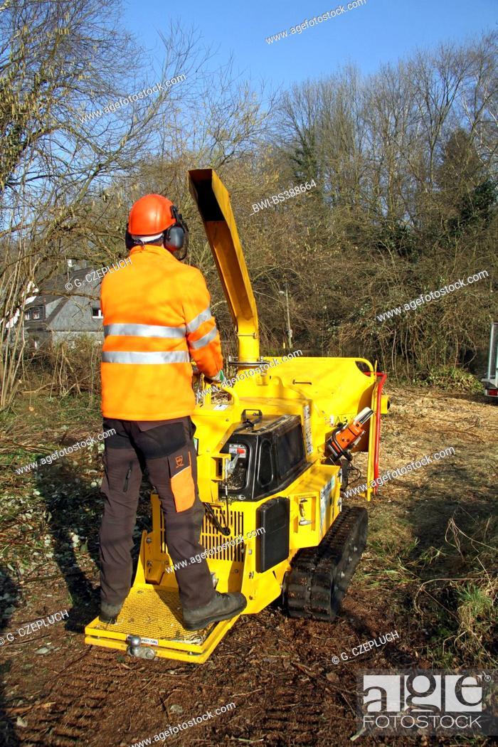 Stock Photo: lumberman on chaff-cutting machine, Germany.
