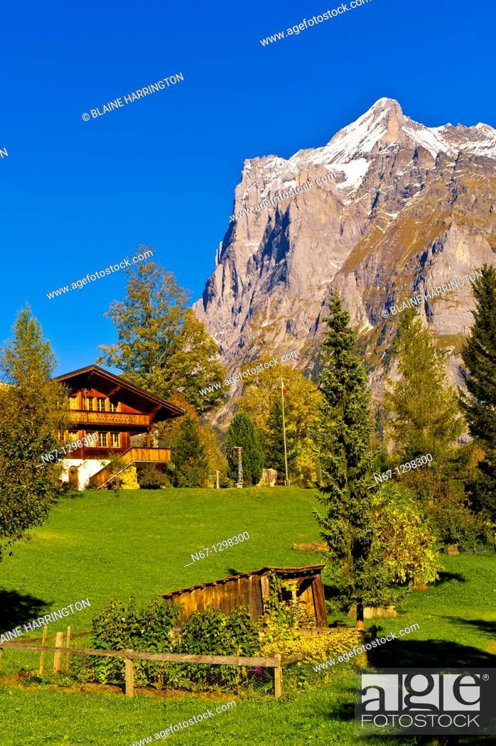 Stock Photo: Grindelwald, Swiss Alps, Canton Bern, Switzerland.