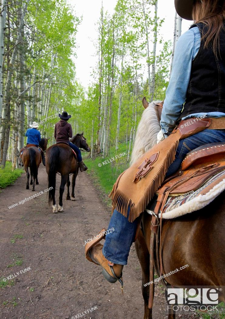 Imagen: A group of riders make their way through a stand of Poplar trees at AP Guest Ranch, South of Merritt, Nicola Valley, Thompson Okanagan region, British Columbia.