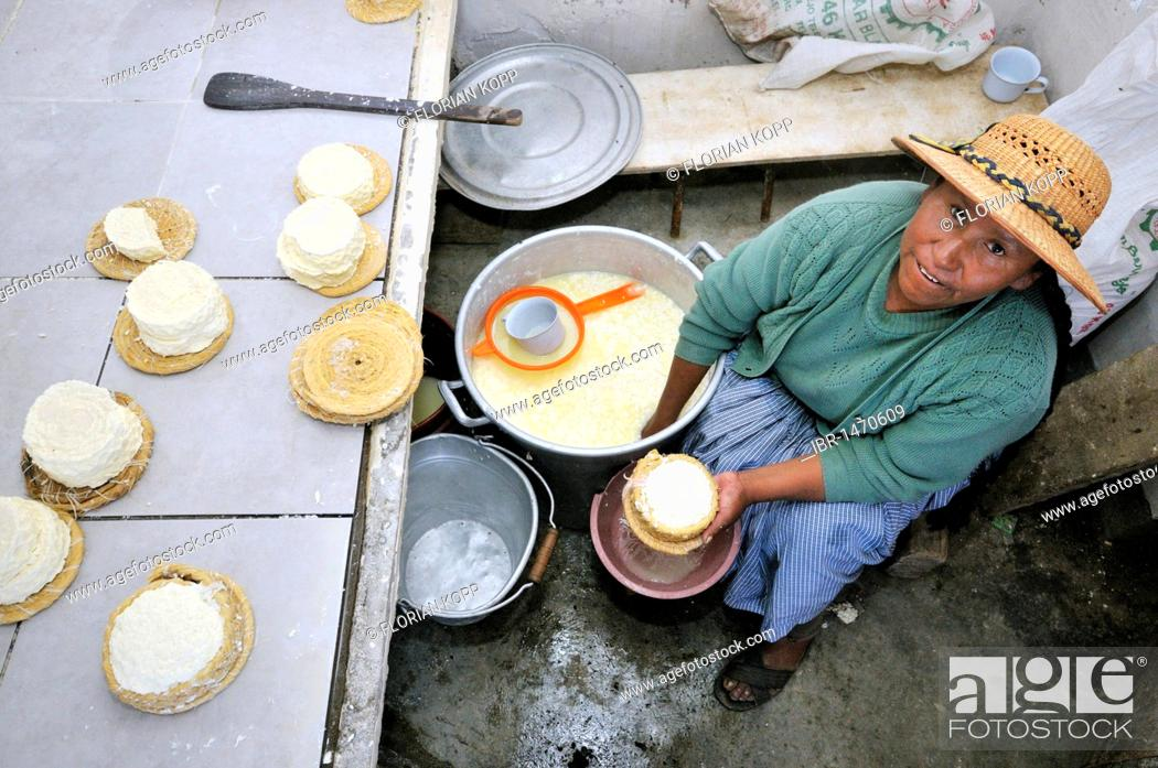 Stock Photo: Production of fresh cheese in the Penas Valley, Departamento Oruro, Bolivia, South America.