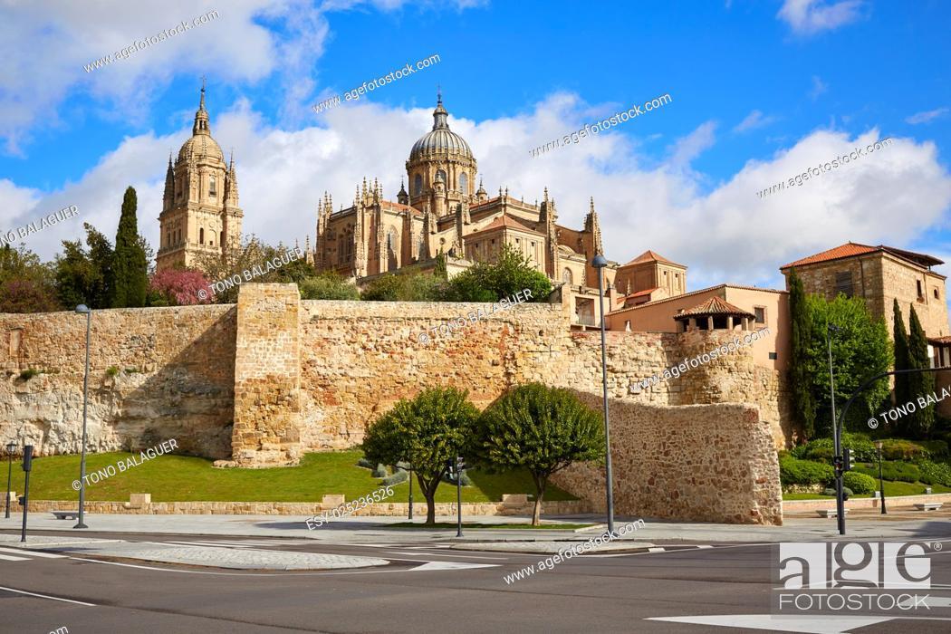 Imagen: Salamanca Cathedral facade in Spain by the Via de la Plata way to Santiago.