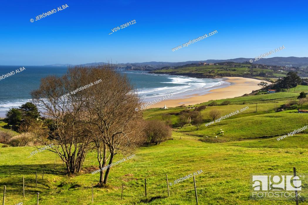 Stock Photo: Meadow of fresh green grass. Oyambre beach, Comillas. Cantabrian Sea. Cantabria Spain. Europe.