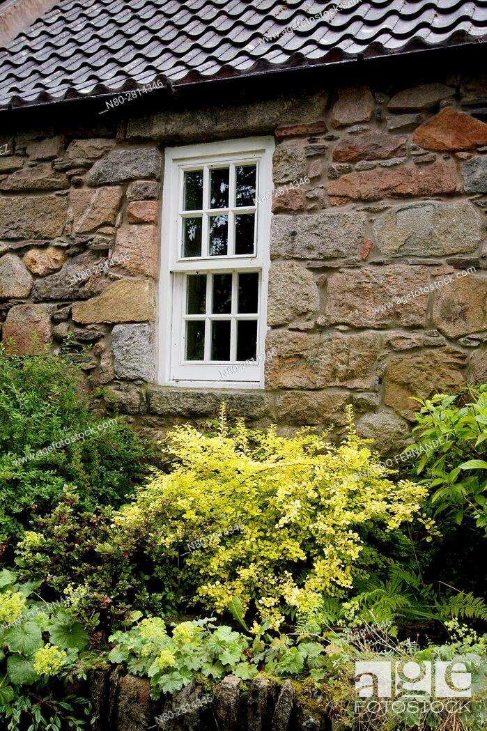 Stock Photo: Cottage. Old Aberdeen. Aberdeen. Aberdeenshire. Scotland.