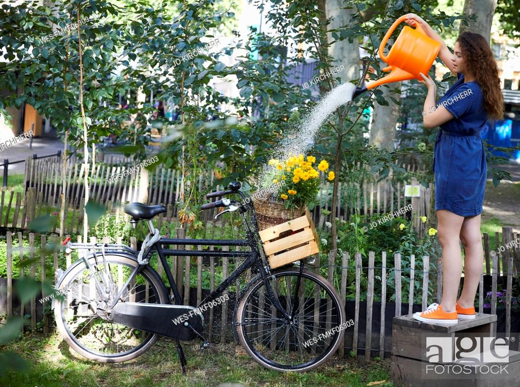 Stock Photo: Young woman watering flowers in wooden box and bicycle in garden.