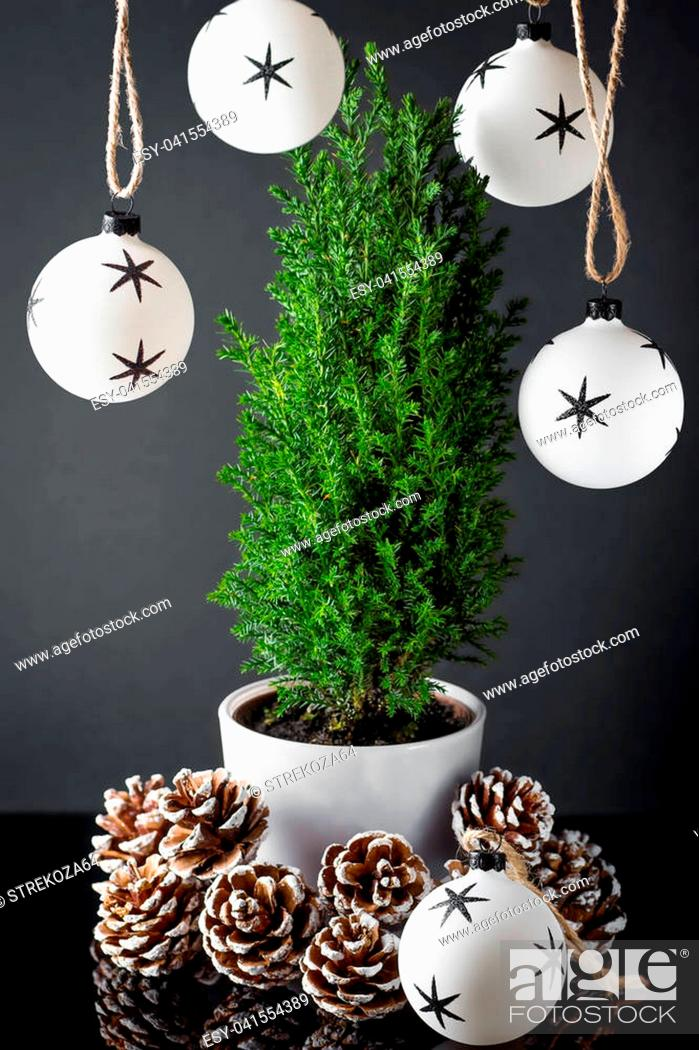 Stock Photo: Small green cypress in the cup with pine cones, Christmas ball on a dark background.
