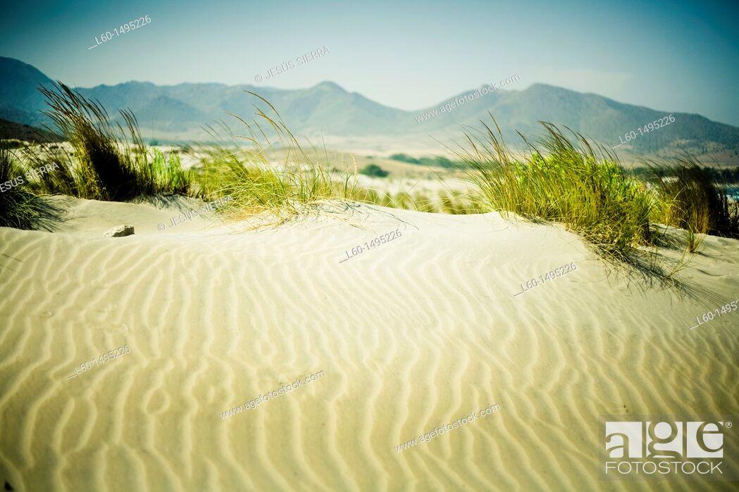 Stock Photo: Dunes in ensenada de los Genoveses, Cabo de Gata, Almeria, Spain.