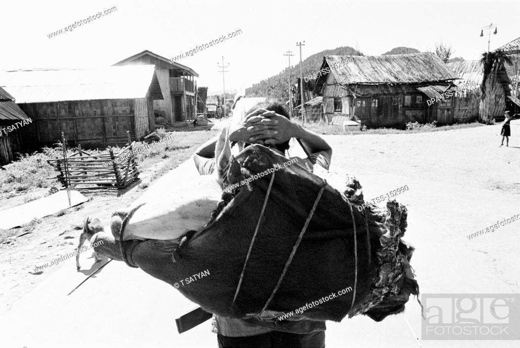 Stock Photo: Man carrying loads ; Kameng ; Arunachal Pradesh ; India 1982.