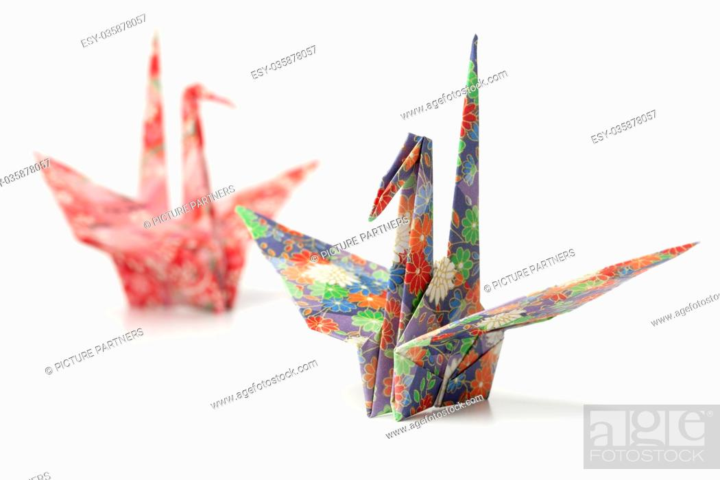 Making Adorably Small Origami Paper Cranes - Ripley's Believe It ...   699x1049