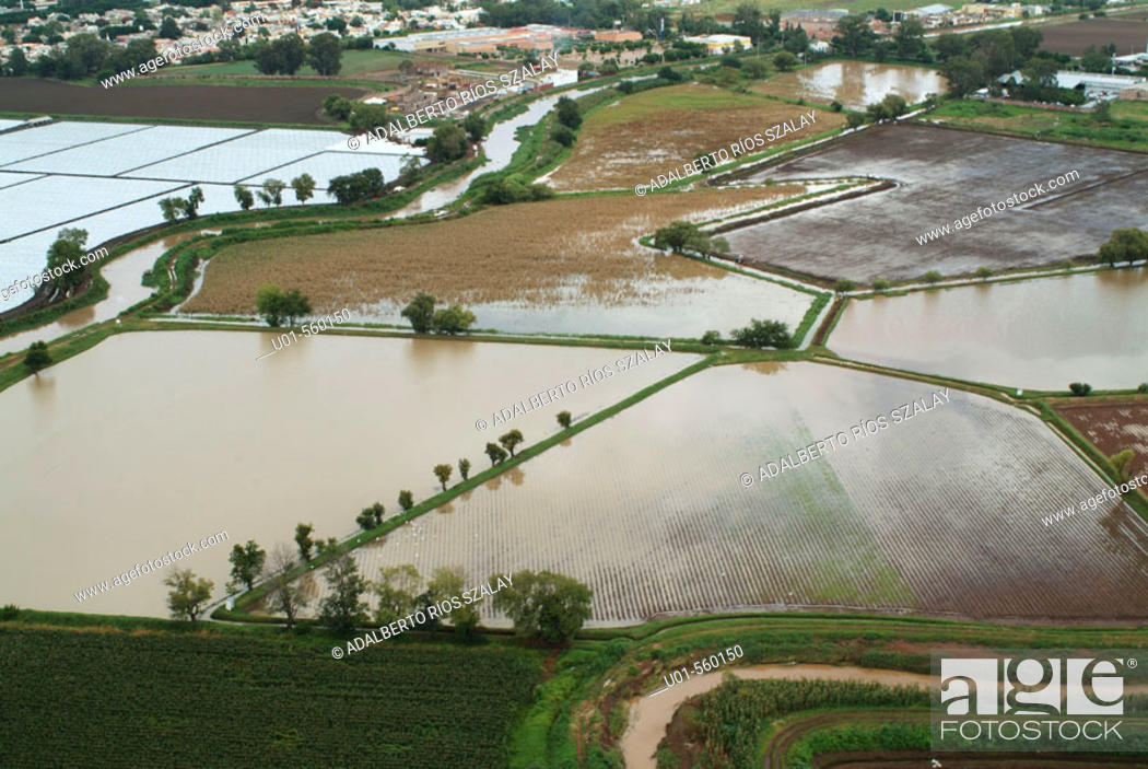 Stock Photo: Flooded fields after cyclone.