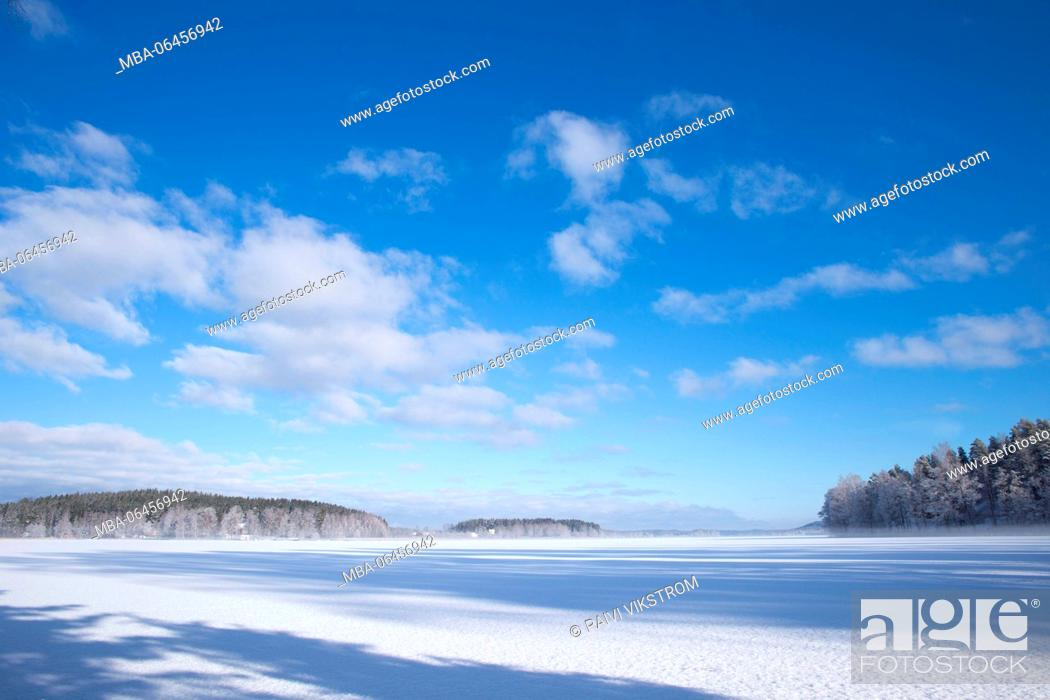 Imagen: Wintry view of the horizon with fresh colors, white ice of the lake and clear blue sky.