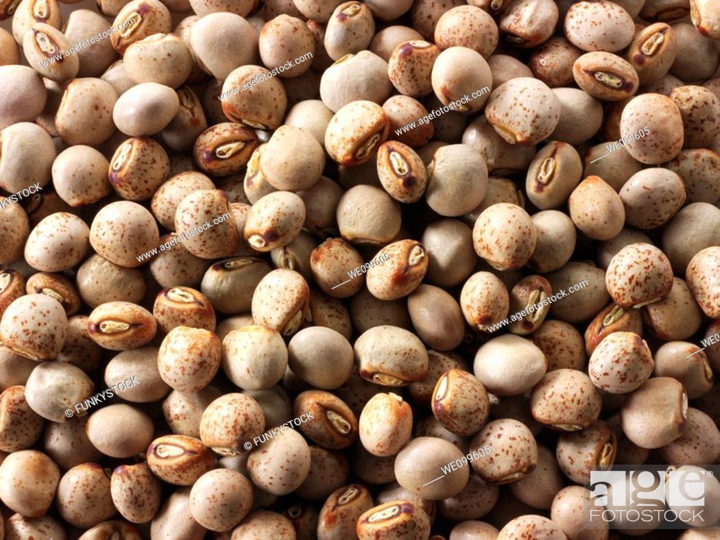 Stock Photo: Whole Gunko Beans.