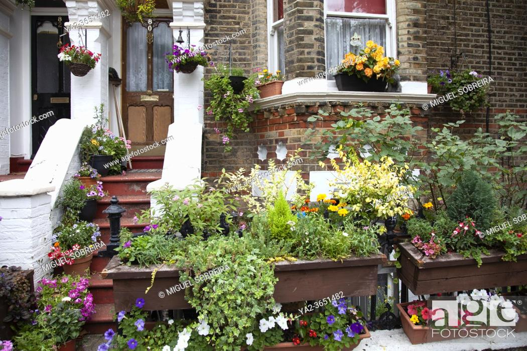 Stock Photo: Home Exterior in Battersea with potplants and flowers, London UK.