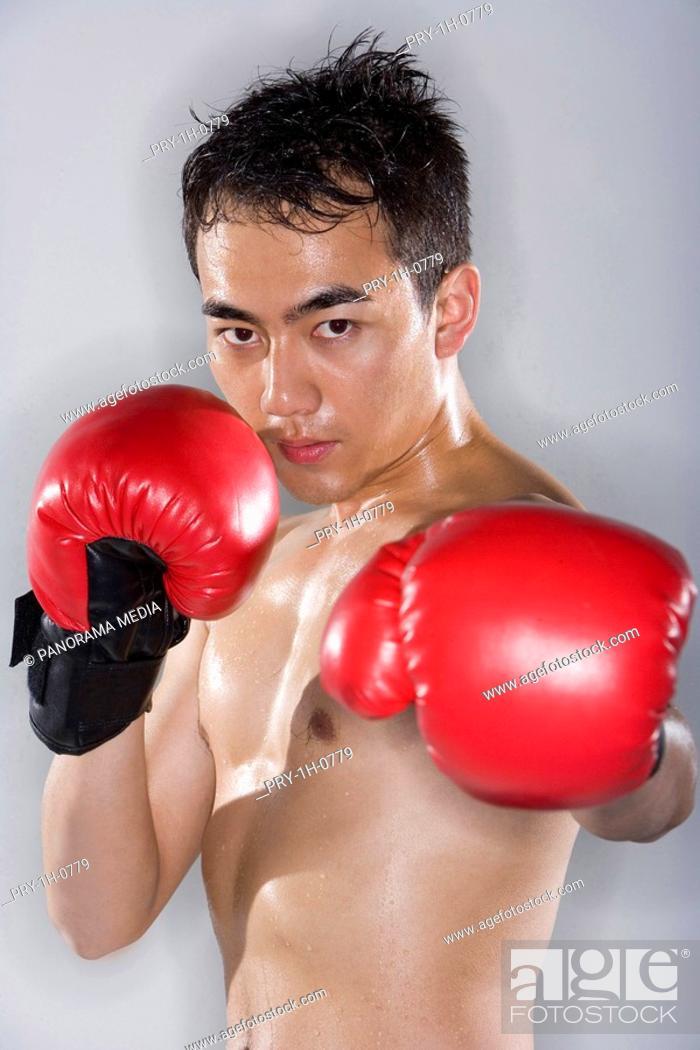 Stock Photo: a male boxer.
