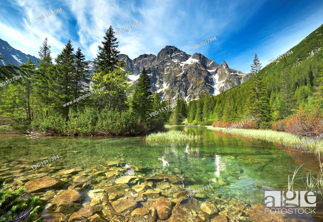 Stock Photo: Rybi Stream, Tatra National Park, Poland, Europe.