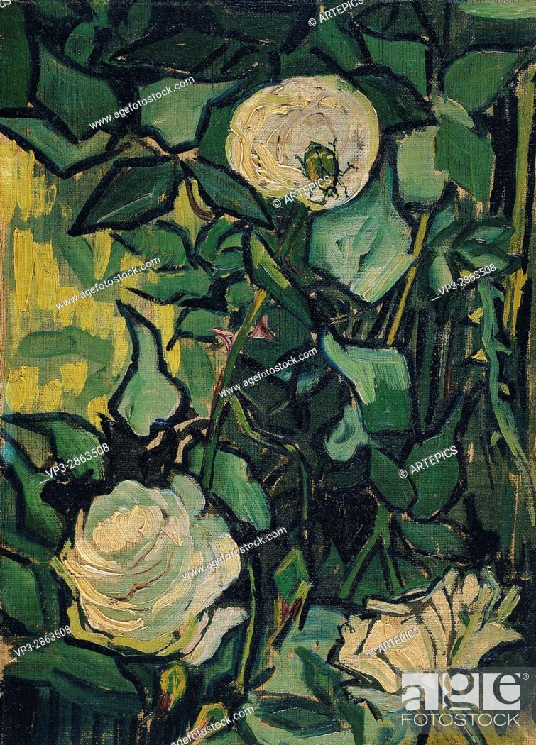 Stock Photo: Vincent van Gogh - Roses - Van Gogh Museum, Amsterdam.