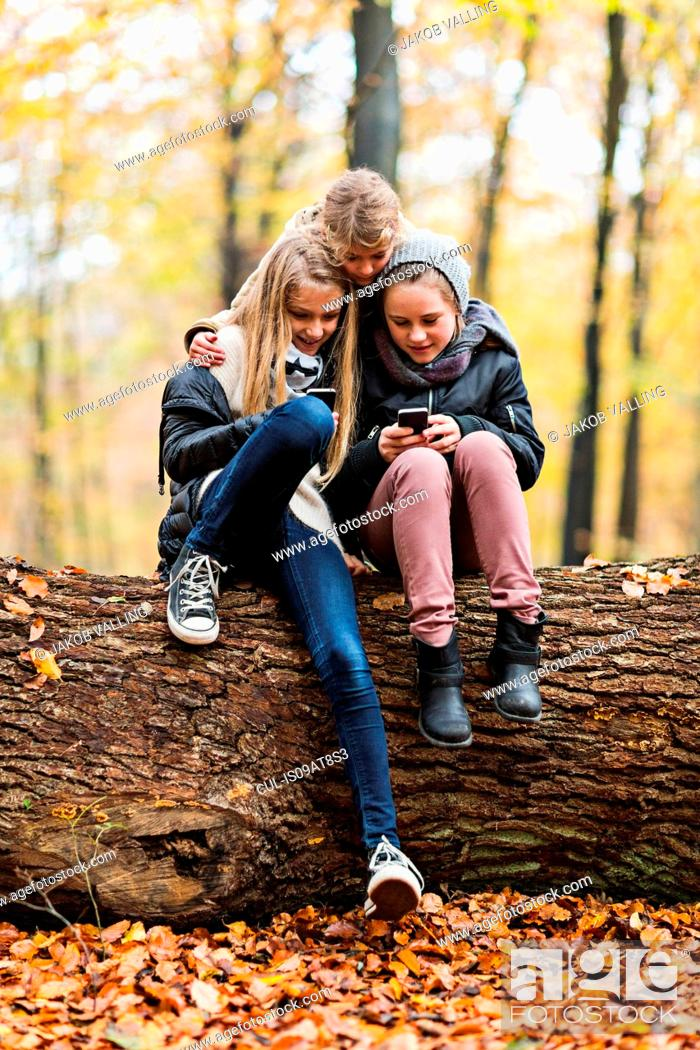 Stock Photo: Girls using smartphone on tree trunk in autumn forest.