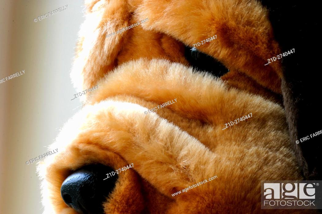 Imagen: Soft toy dog for children.