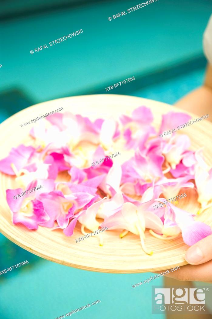 Stock Photo: Tray with flowers.