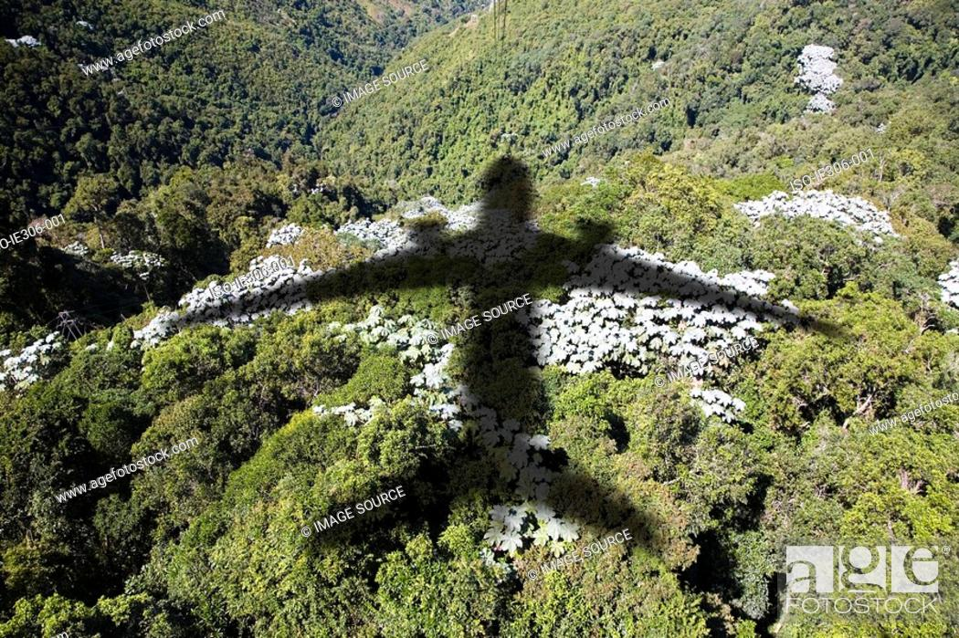Stock Photo: Shadow of an airplane over a forest.