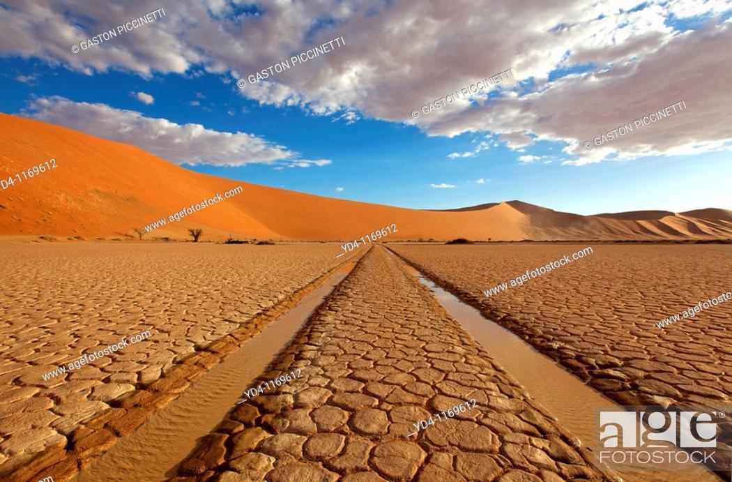 Stock Photo: in the Hidden Vlei, Namib-Naukluft National park, Namib desert, Namibia.