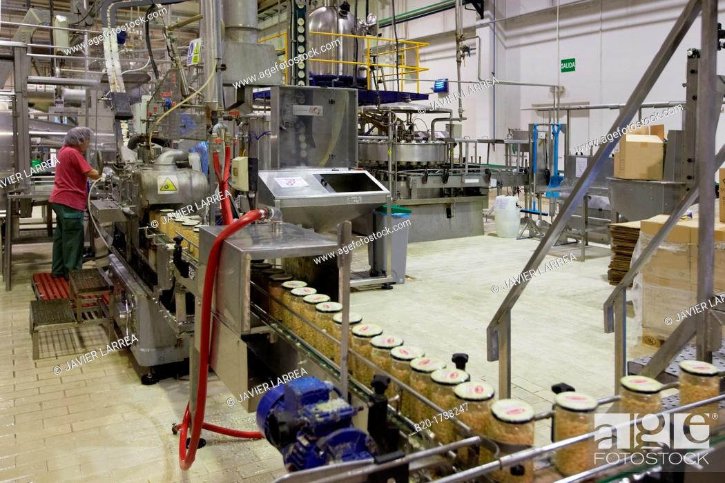 Stock Photo: Bean bottling, Production line of canned vegetables and beans, Canning Industry, Agri-food, Logistics Center, Gutarra-Riberebro Group, Villafranca, Navarre.