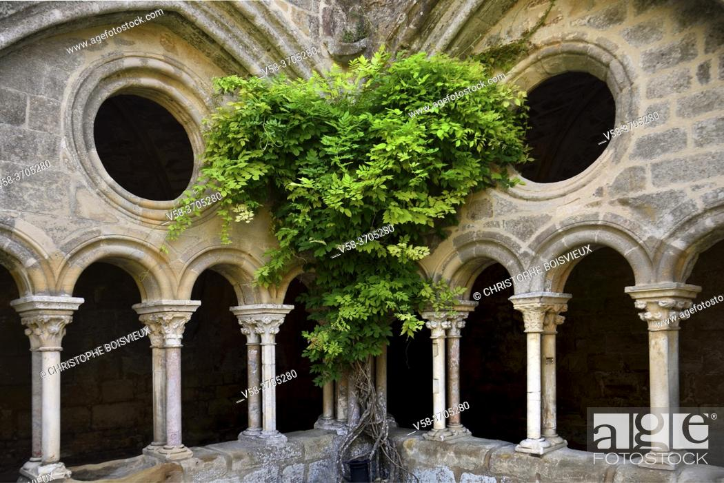 Imagen: France, Aude, Fontfroide abbey, The cloister.