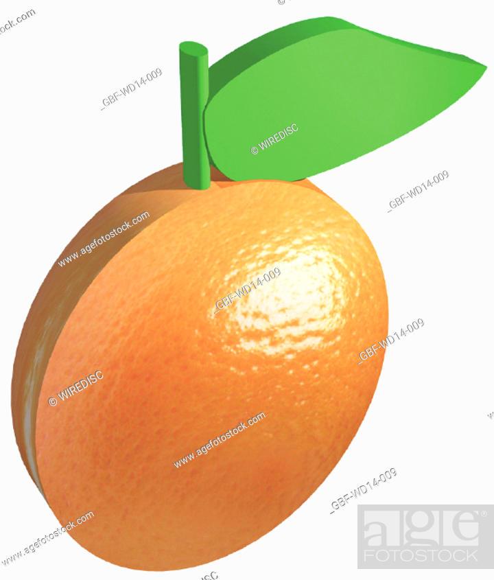 Stock Photo: Illustration, fruit, orange.