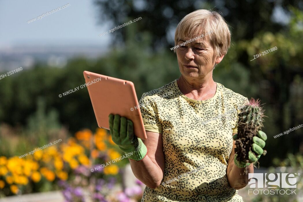 Stock Photo: Russian Federation. A pensioner in the garden to the plate.