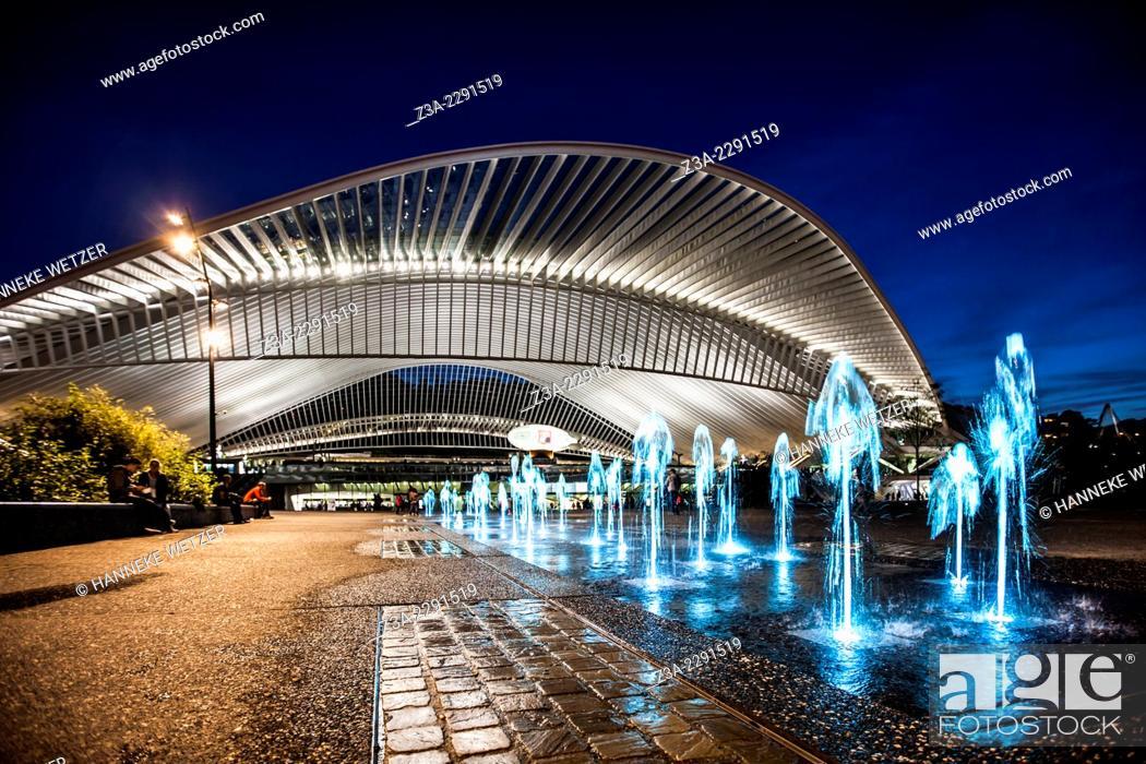 Stock Photo: Liège-Guillemins central station, designed by architect Santiago Calatrava, Belgium.