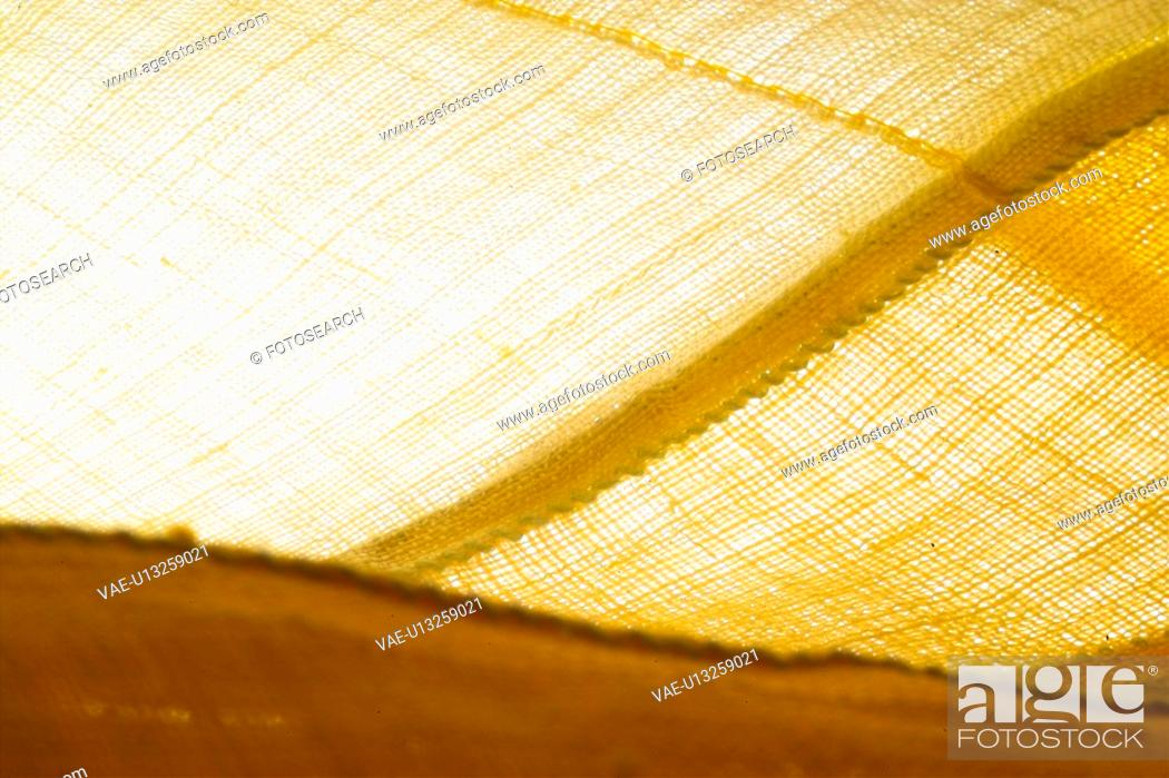 Stock Photo: house item, dyeing.
