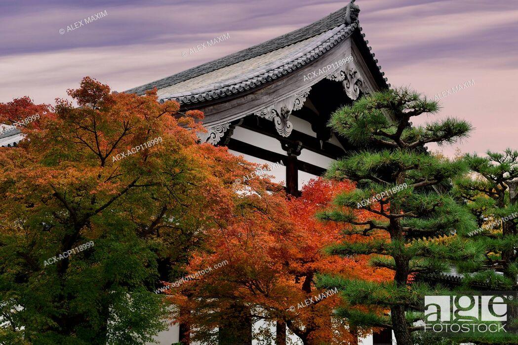 Stock Photo: Autumn scenery of a Japanese garden in front of Tofukuji temple building. Tofuku-ji, Higashiyama-ku, Kyoto, Japan 2017.