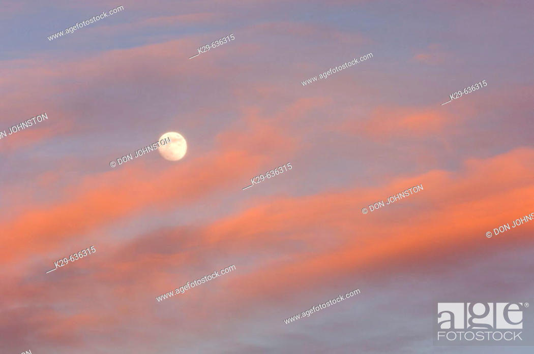 Stock Photo: Full moon and evening clouds.