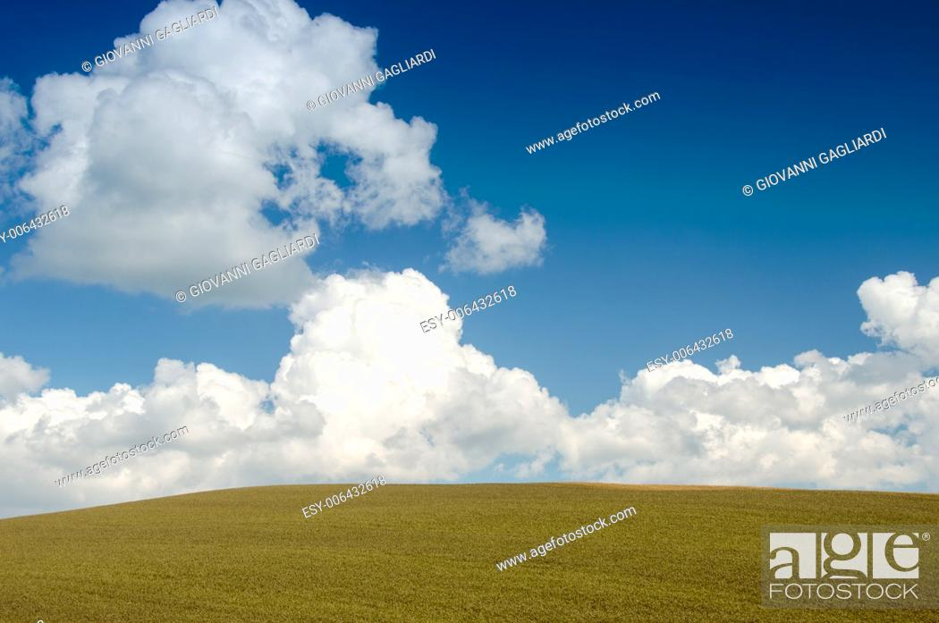 Imagen: Green field and blue sky with clouds.