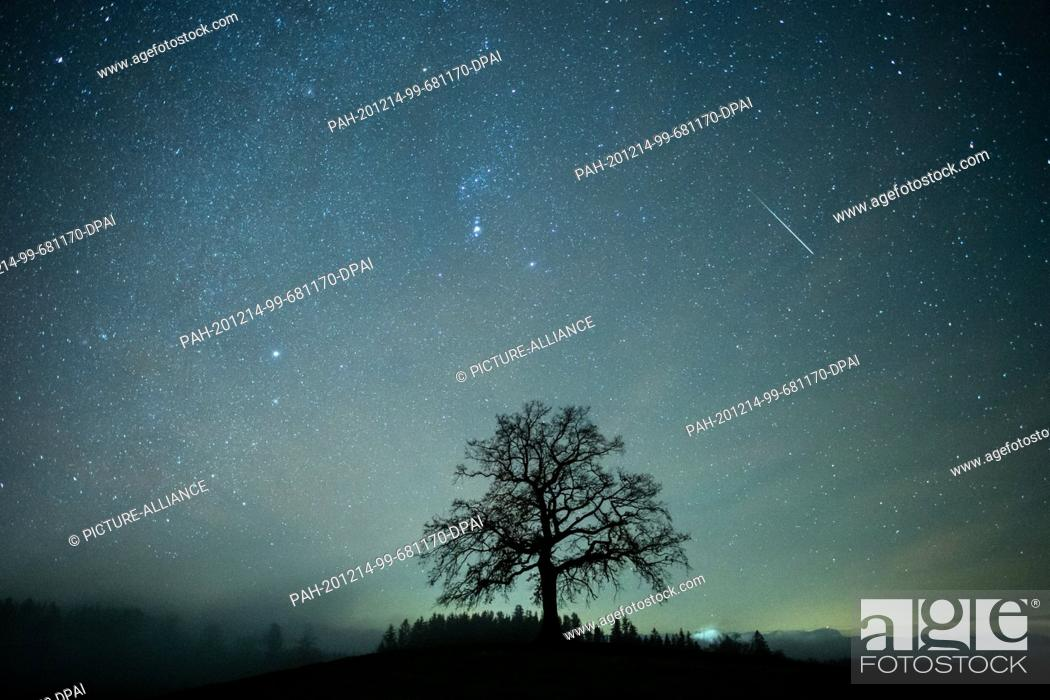 Stock Photo: 14 December 2020, Bavaria, Münsing: A shooting star can be seen during the Geminids meteor stream in the starry sky above a tree.