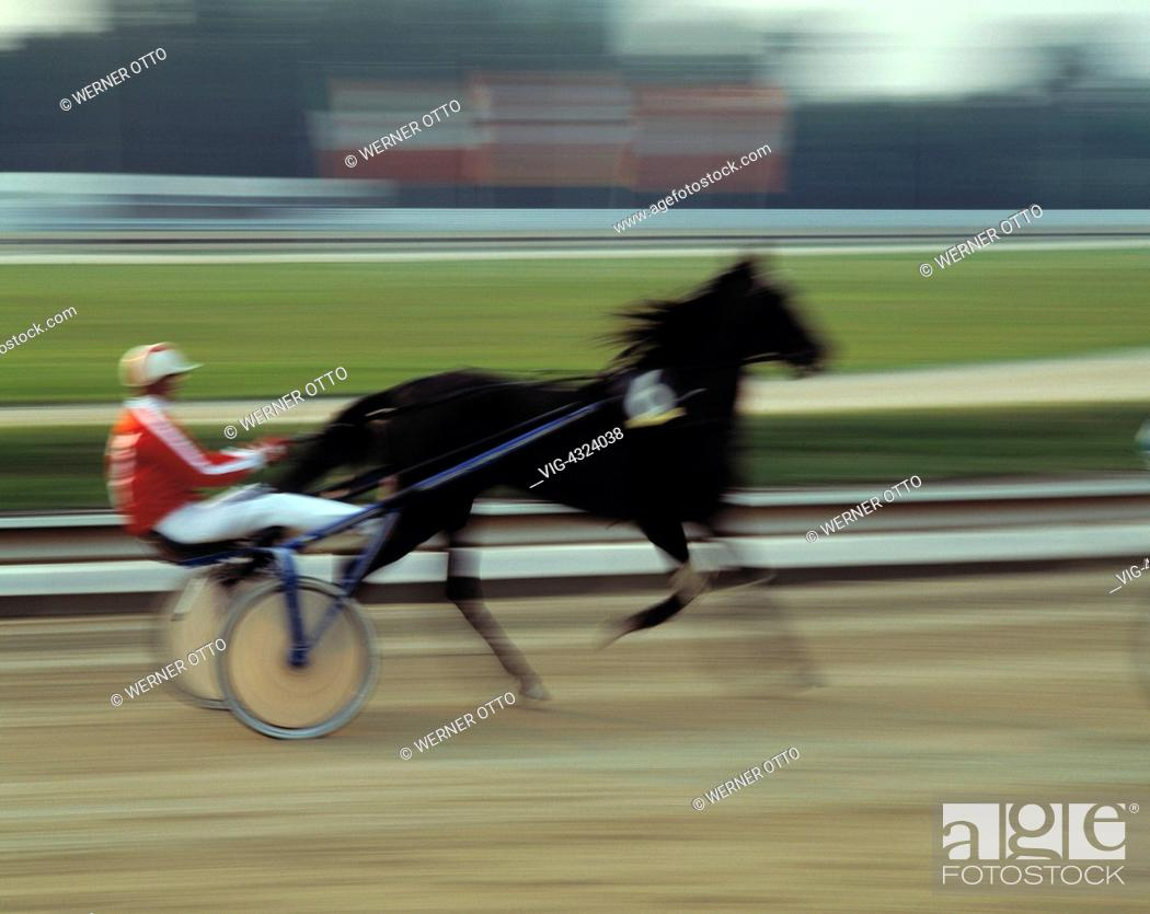 Sport Pferdesport Reiten Reiter Pferderennen Trabrennen