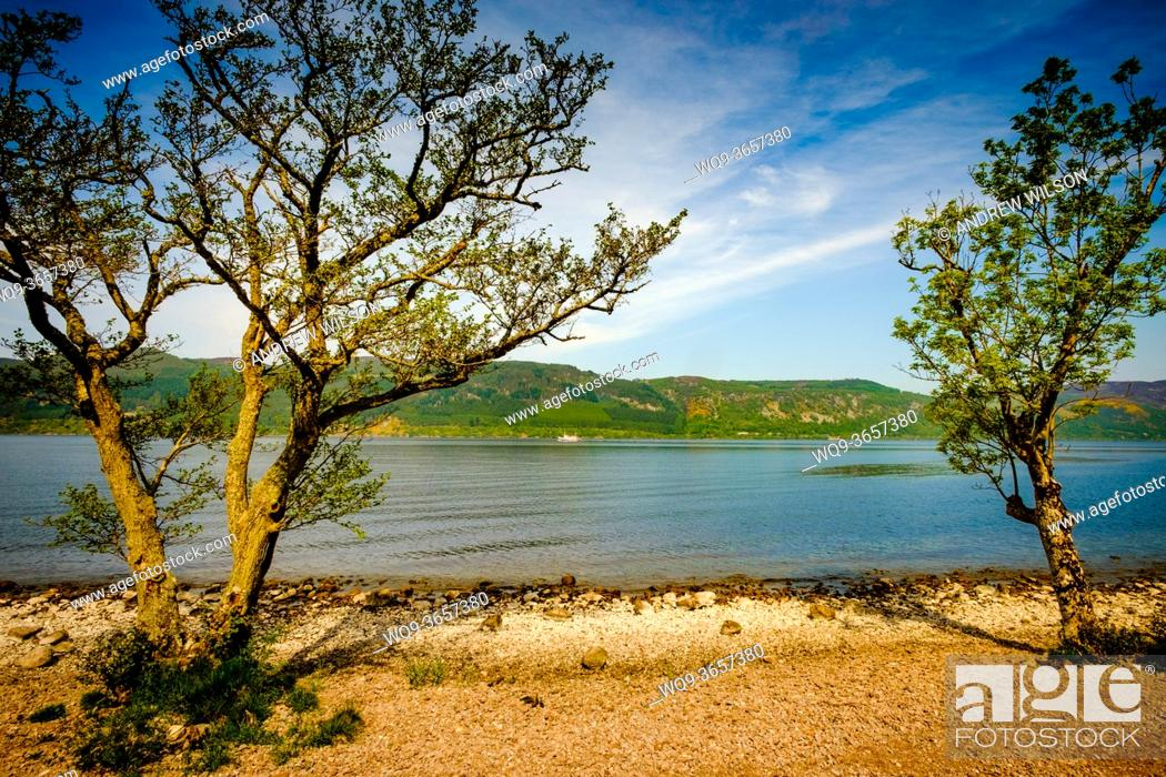 Stock Photo: Looking over Loch Ness from the eastern shore near Foyers, Highlands of Scotland.
