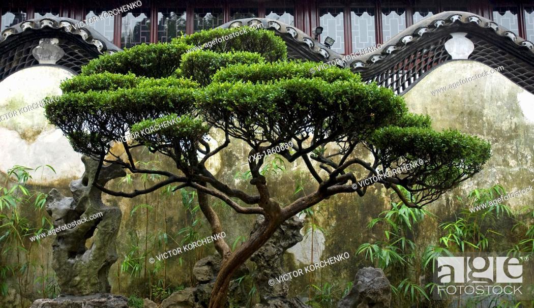 Stock Photo: Art of Chinese garden design, Yu Gardens in Sahnghai.