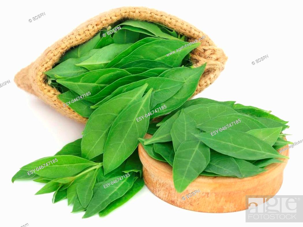 Photo de stock: Henna leaves in sack and a wooden bowl over white background.