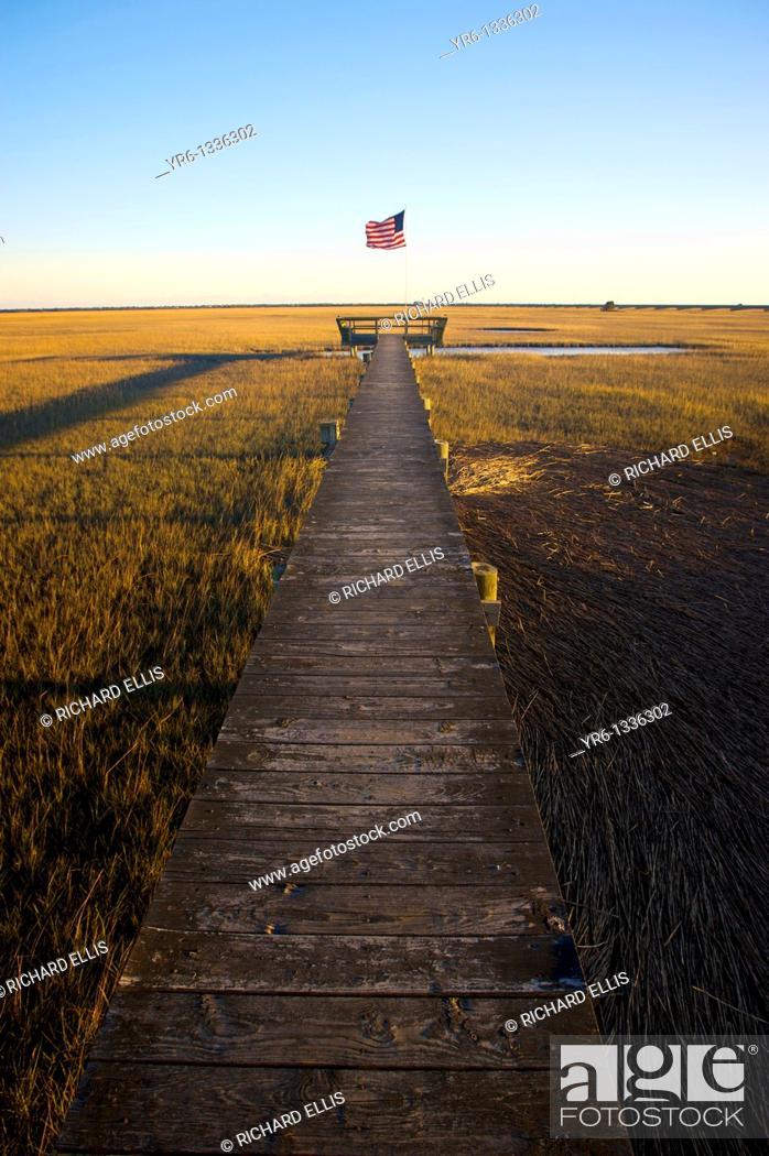 Imagen: Saltwater marsh along the coast of South Carolina near Charleston.