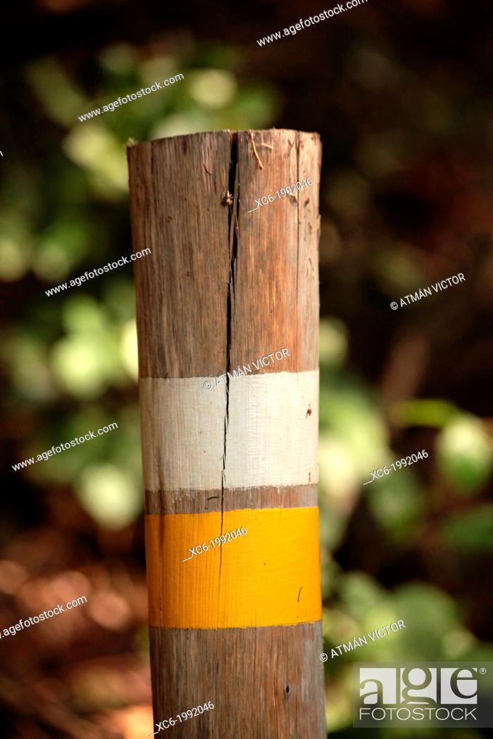 Stock Photo: Signpost in a hiking path, Tenerife, Canary Islands, Spain.