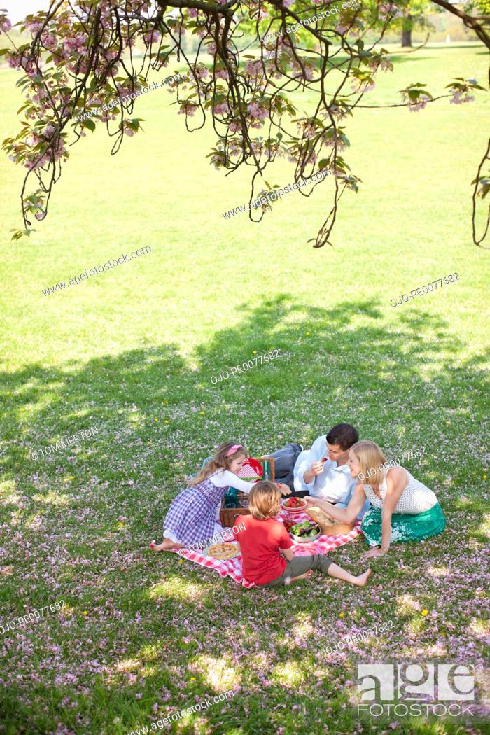 Stock Photo: Family picnicking in park.