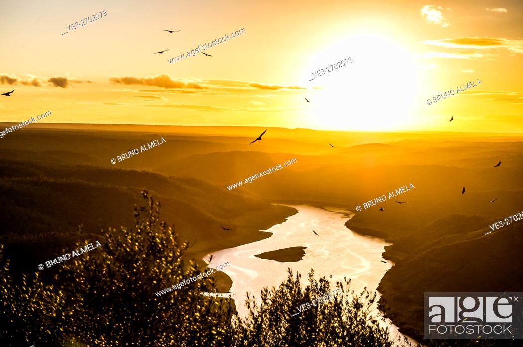 "Stock Photo: View from Monfragüe's Castle of """"José María de Oriol"""" dam and vultures flying in Tajo river, Monfragüe National Park (Cáceres Province, Extremadura Region."