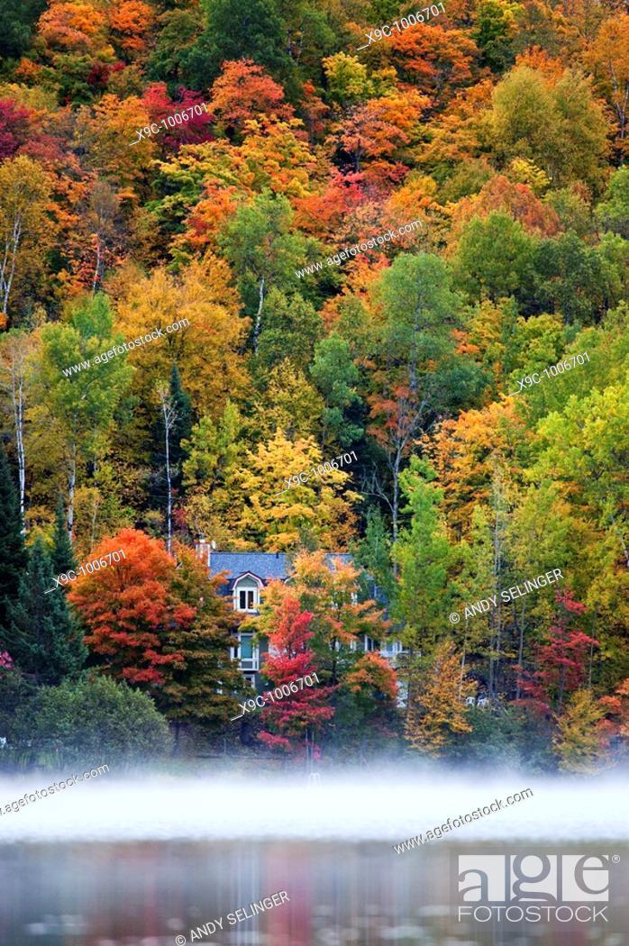 Stock Photo: Autumn Scenery in Canada.