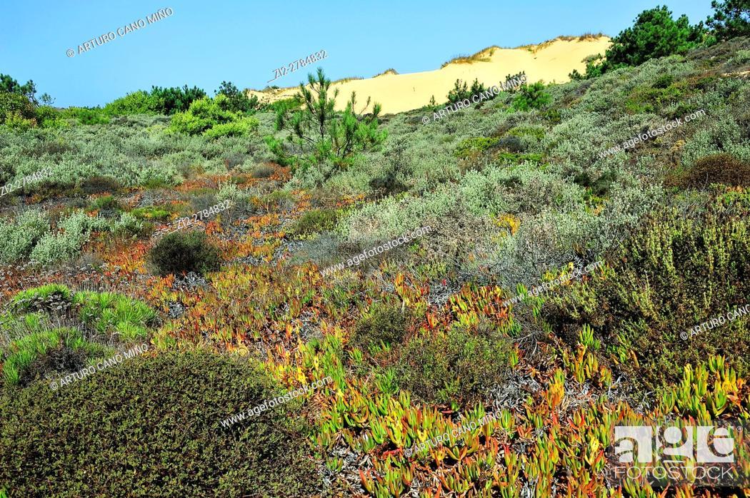 Imagen: Southwest Alentejo and Vicentine Coast Natural Park. Alentejo, Portugal.