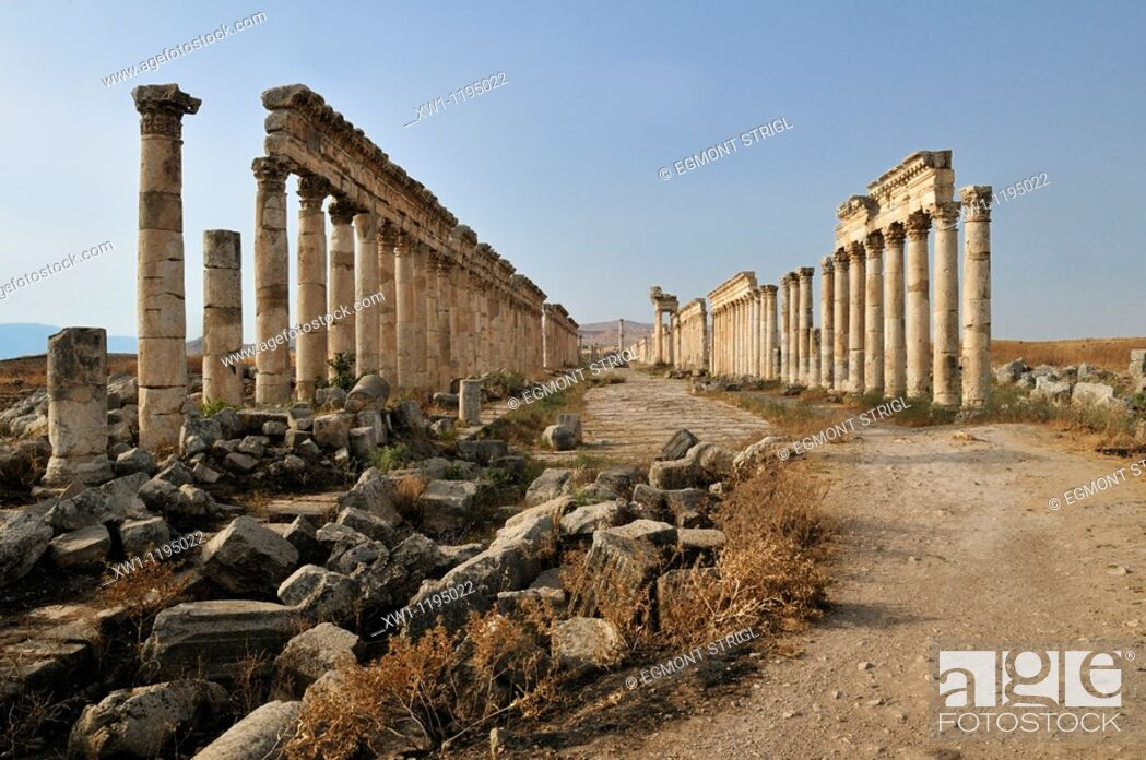 Imagen: ruins at the roman archeological site of Apameia, Apamea, Qalaat al Mudiq, Syria, Middle East, West Asia.