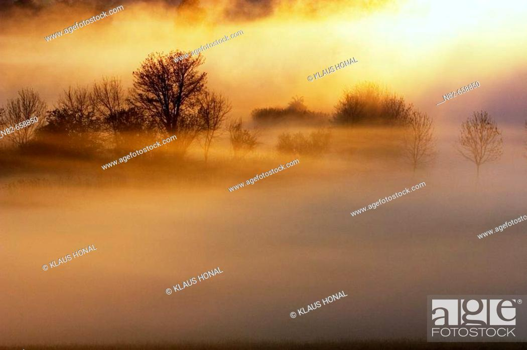 Stock Photo: Sunrise in foggy morning at the woernitz (Wörnitz) river. A big screen of fog at the woernitz river, Middle Franconia, Bavaria/Germany.