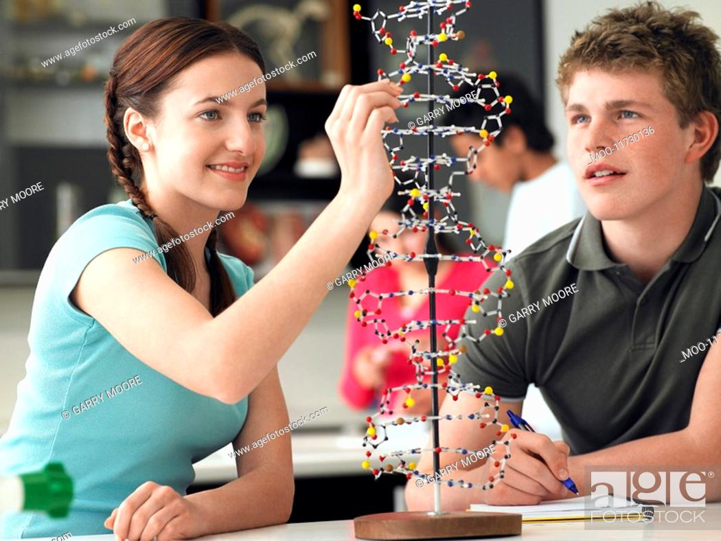Stock Photo: Teenagers working on DNA model in science class.