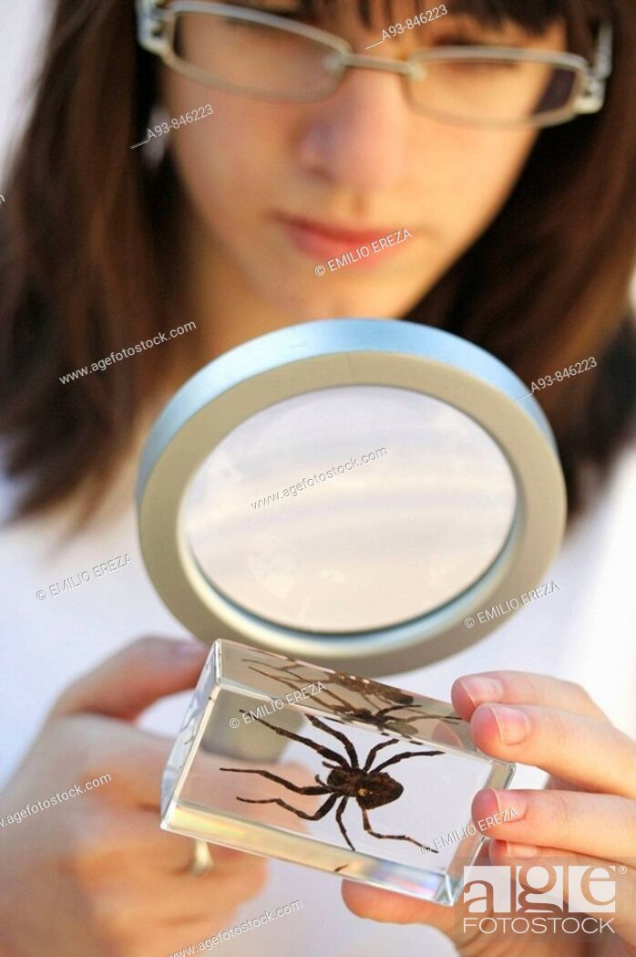 Stock Photo: Watching a spider.